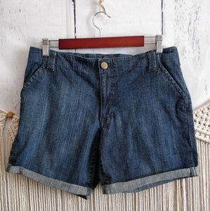 4/$15 Banana Republic Blue Denim Cutoff Shorts